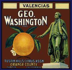 Tustin George Washington Orange Citrus Crate Label Art Print