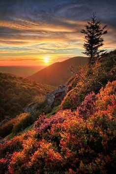 ✮ Mountain Sunset, Chaîne des Puys, Auvergne, France ~ this is such a beautiful sight. Beautiful Sunset, Beautiful World, Beautiful Places, Beautiful Scenery, Beautiful Morning, Simply Beautiful, Pretty Pictures, Cool Photos, Amazing Photos