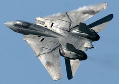 VF-31 (VFA-31) the Tomcatters Airplane Fighter, Fighter Aircraft, Fighter Jets, Navy Aircraft, Military Aircraft, Tomcat F14, Uss Enterprise Cvn 65, Black Beast, American Fighter