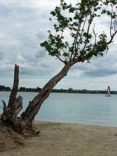Riu Negril, Bloody Bay Beach, Jamaica