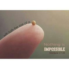 """This is an actual size of a mustard seed❢ ツ -- Matthew 17:20 -- ❝So Jesus said to them, """"Because of your unbelief; for assuredly, I say to you, if you have faith as a mustard seed, you will say to this mountain, 'Move from here to there,' and it will move; and nothing will be impossible for you.❞ #bibleverse #faith #GodsGotThis"""