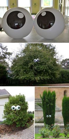 Get giant beach balls and paint eyes on them, then place in tree facing neighbours house.