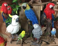 Our amazing new Parrot range ... So realistic #lincswildlife #parrot #resinfigures by lincolnshire_wildlife_park http://www.australiaunwrapped.com/