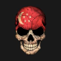 Shop Singapore Flag Skull singapore t-shirts designed by jeffbartels as well as other singapore merchandise at TeePublic. Ghost Rider Drawing, Skull Fire, Fire Art, Teal And Gold, Skull Design, National Flag, Vintage Travel Posters, Photo Postcards, Textile Patterns