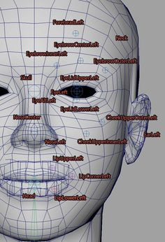 Maya Modeling, Modeling Tips, 3d Model Character, Character Modeling, Face Topology, Facial Anatomy, Art Periods, Sketches Of Love, 3d Modelle