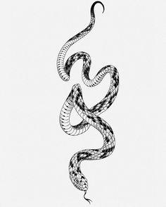 Tattoo Animal, Snake Tattoo, Flash Art, All Tattoos, Snakes, Blackwork, Ranger, Tatting, Tattoo Designs