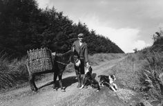 A farmer on his way to the bog to gather peat, County Leitrim, Ireland, 1981 St Patrick's Day Traditions, Irish Famine, Irish Culture, People Poses, Irish Recipes, Old Photos, Farmer, Ireland, History