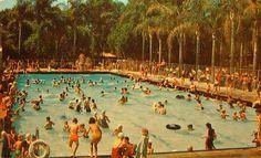 Swimming Pools On Pinterest Swimming Pools Indoor Swimming Pools And Pools
