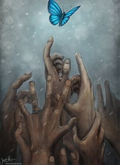 The Last Butterfly by Jeremiah Morelli: There's something terribly poignant about this...