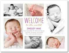 Worldly Welcome - Birth Announcement Postcards - Bird and Banner - Fuchsia - Pink : Front