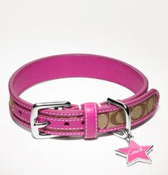 Coach collar