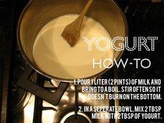 DIY yogurt - has anyone ever made this?