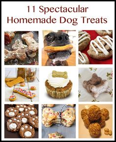 Here's a fun collections of 11 specialty homemade dog treat recipes! Puppy Treats, Diy Dog Treats, Homemade Dog Treats, Easy Dog Treat Recipes, Dog Food Recipes, Cooking Recipes, Dog Cookies, Dog Biscuits, The Best