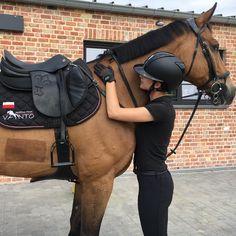 Horse Riding Clothes, Horse Riding Tips, Horse Riding School, Horse Riding Helmets, Beautiful Horses, Cute Horses, Pretty Horses, Animals Beautiful, Horse Care