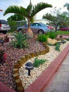 Resultado de imagem para no maintenance landscaping florida