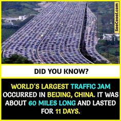 20 Cool Facts ( to Enhance your Knowledge and Make you Smart - Soocoool Wierd Facts, Wow Facts, Intresting Facts, Real Facts, Wtf Fun Facts, Crazy Facts, Funny Facts, Weird, Funny Memes