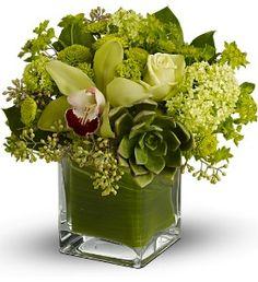 Leaves inside vase