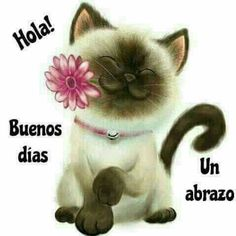 38 Ideas For Quotes Good Morning Spanish Good Morning In Spanish, Good Morning Funny, Good Morning Messages, Good Morning Good Night, Good Morning Quotes, Morning Thoughts, Morning Gif, Hello In Spanish, Birthday Wishes Greeting Cards
