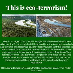 eco terrorism examples