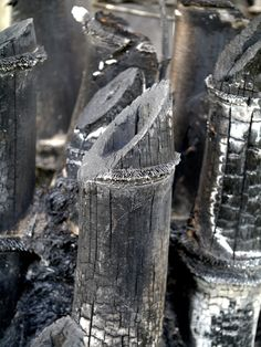 Biochar is a unique environmental approach to fertilizing. Primary biochar benefits are its potential to combat climate change by removing harmful carbon from the atmosphere. So what is biochar? Learn more about biochar and its benefits in this article.