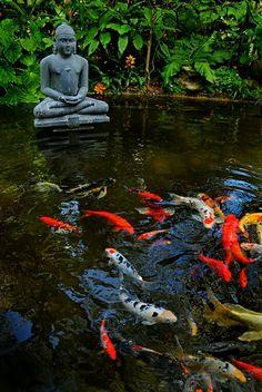 buddha, jardin zen, om, meditacion