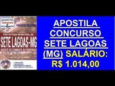 Apostila Concurso Público Sete Lagoas (MG) Agente de Combate às Endemias...