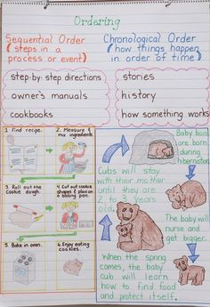 Sequencing Anchor Chart and Free Graphic Organizers