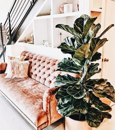 These industrial living room design ideas are going to be the next best idea when it comes to changing your living room! Pink Velvet Couch, Pink Sofa, Living Room Sofa, Living Room Decor, Interior Exterior, Interior Design, Dream Decor, Home Decor Inspiration, Decoration