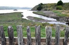 Oysters farms along California's Highway One in West Marin