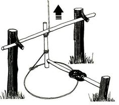 Taut rope from the tree is inclined to the end of the toggles, which held the crossbar. Lever with bait keeps the brakes in place. Homestead Survival, Wilderness Survival, Camping Survival, Outdoor Survival, Survival Prepping, Survival Gear, Survival Skills, Survival Knots, Bushcraft Gear