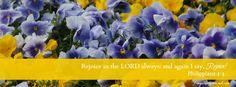 Free Facebook Cover Photos - Hello Spring! & Philippians 4:4   Frugal & Focused