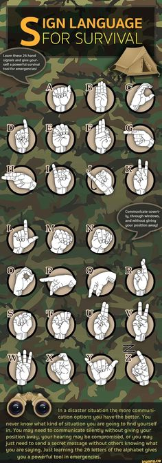 #namethatweapon, #fact, #firstfeat, #survival, #facts #signlanguageposter #SurvivalSkillsInfographic