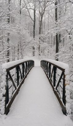 Reminds me of my grandparent's when i was a child  Bridge to tranquility • photo: Richard Nowitz on Allposters