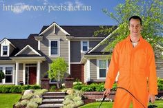 pests.net.au is an internet site developed to give you info about Australian Bugs and direct you to your Regional pest control Corporate or Termite Professional.Local Pest Control Companies are set up to your regional suburb or postcode.Insert the postal code or suburb and also we will certainly give you with the Regional Pest Control Company or Termite Professional that services your area.