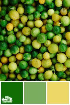 Color Schemes Colour Palettes, Green Color Schemes, Color Combos, Color Palette Challenge, Green Colour Palette, Colour Board, Color Of Life, Color Inspiration, Lego Bedroom