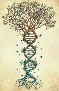 Love this tree. I'd get it with out the birds tho #dna #tree #family