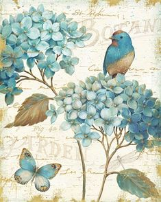Express garden-inspired peace and beauty with the sweet floral design of the Global Gallery Blue Garden III Crop Wall Art . Hang this sophisticated canvas. Vintage Cards, Vintage Paper, Vintage Images, Canvas Artwork, Canvas Prints, Canvas Canvas, Blue Canvas, Canvas Fabric, Intermediate Colors