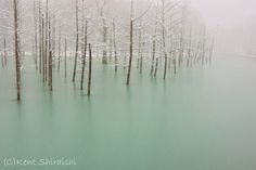 13. Green Frozen Pond Located In Hokkaido, Japan - 18 Beautiful Frozen Lakes, Oceans And Ponds That Resemble Fine Art
