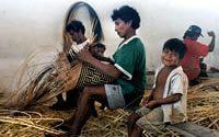 A partir de 1998, após a demarcação das TIs na região do Rio Negro, a FOIRN e associações filiadas, em parceria com o ISA, começaram a implantar um conjunto de projetos-piloto para viabilizar algumas iniciativas prioritárias das comunidades indígenas, na direção de um Programa Regional de Desenvolvimento Indígena Sustentável . Entre estas, incentivar a produção sustentável por encomenda de cestaria de arumã para comercialização com a gestão direta dos recursos pelas associações baniwa.