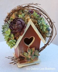 Birdhouse Art by succulent floral artist Cindy Davison from The Succulent Perch