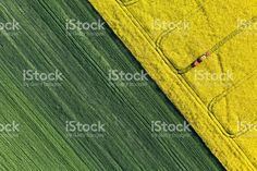 aerial view of harvest fields with tractor stock photo 77386851 - iStock
