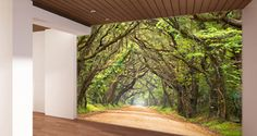 What more relaxing way to decorate your room than to add a beautiful picture of green oak trees on an endless path? This wall mural will completely change the look of your boring blank walls!