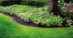 Image result for landscape maintenance