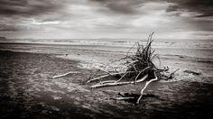 MorningDaily 125 | http://jhpv.co/1vfMs5R #Beach, #DSLR, #MorningDaily, #Nature, #NewZealand  See me - http://jhpv.co/JHPVSite Own me - http://jhpv.co/JHPVStore