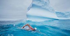 danvergano swim whales