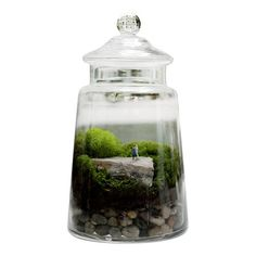Masterpiece Ready-Made Terrarium: features an animated master sculptor chipping away at Italian marble to reveal the perfect girl within. This apothecary jar is 11″ tall and 6.5″ wide and uses petrified wood as the base for the sculptor and statue. By Twig Terrariums.