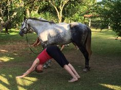"A lot of people give me either goofy smiles of bewilderment or blank stares of ""huh?"" when I mention combining my passion for Yoga with my passion for horses. Both fulfill me so much, and I feel my life has been transformed in an ever-changing way by both of these passions. Yoga is a science that teaches us how to find our Soul, or some would say, our Self-realization. True horsemanship does the same thing. Both are transformative practices. Both are experiential practices. I like to"