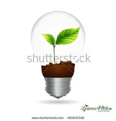 Light Bulb with sprout inside,green eco energy concept - stock vector