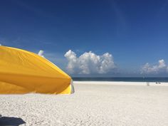 Clearwater Beach - Voted Best Beach Town in Florida! Explore white-sand beaches, delicious restaurants like Frenchy's Rockaway Grill, and a great nightlife! Sands Resort, Clearwater Florida, Beach Town, Sunshine State, White Sand Beach, Summer Beach, Night Life, Things To Do, Explore