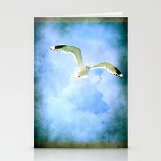 Seagull Stationery Cards by Fine2art - $12.00